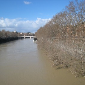 The Tevere in flood mode