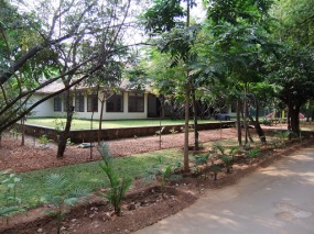 My Bungalow in Chennai