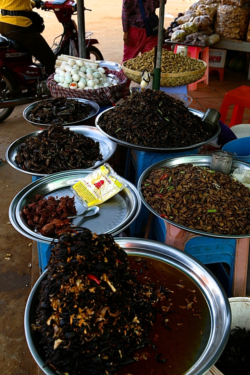 from bottom to top - crispy tarantulas, whole frogs, sautéed grubs, deep fried grasshoppers, cockroaches and parboiled cocoons