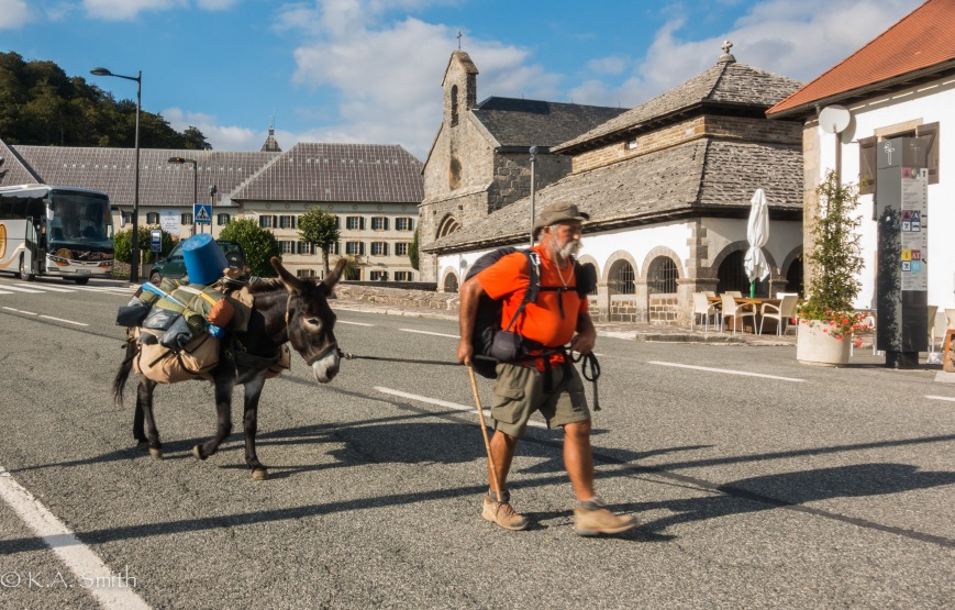 This intrepid duo started in Brittany, walked to Santiago de Compostela and are now walking back home!
